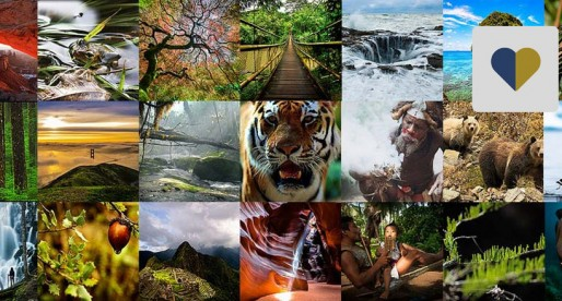 Revista Nature publica artículo de universitaria sobre biodiversidad
