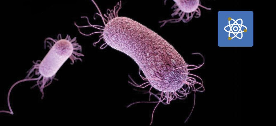 UNAM busca tratamiento contra bacterias resistentes a antibióticos