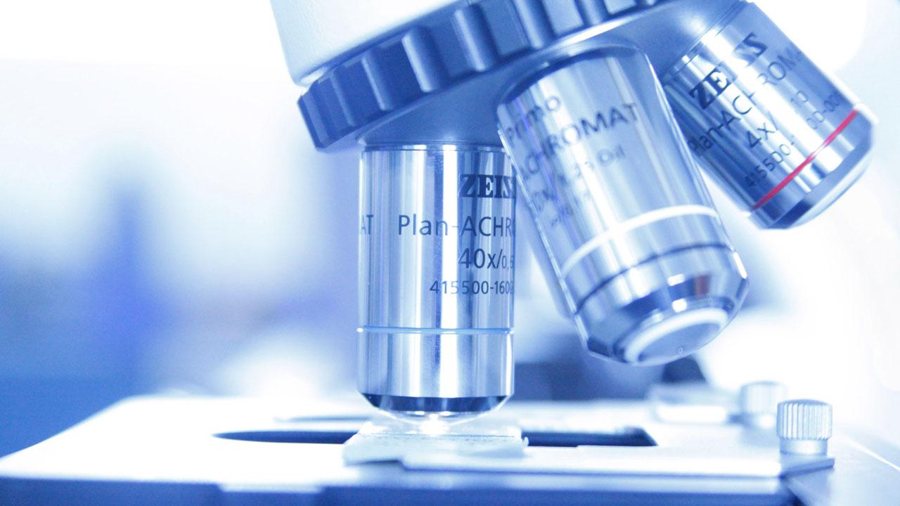 microbiologia_contenido2