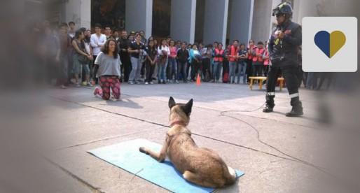 Conoce el programa de Manejadores de Perros de Búsqueda y Rescate de la UNAM