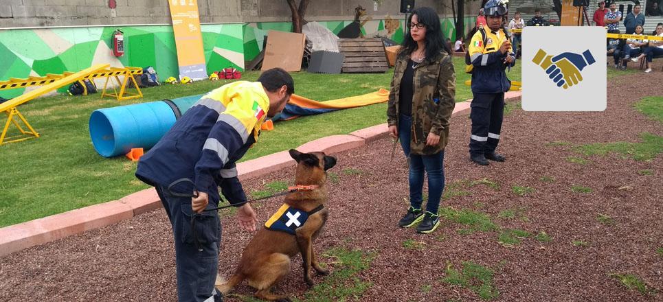 Fundación UNAM presenta demostración de perros de rescate de la UNAM