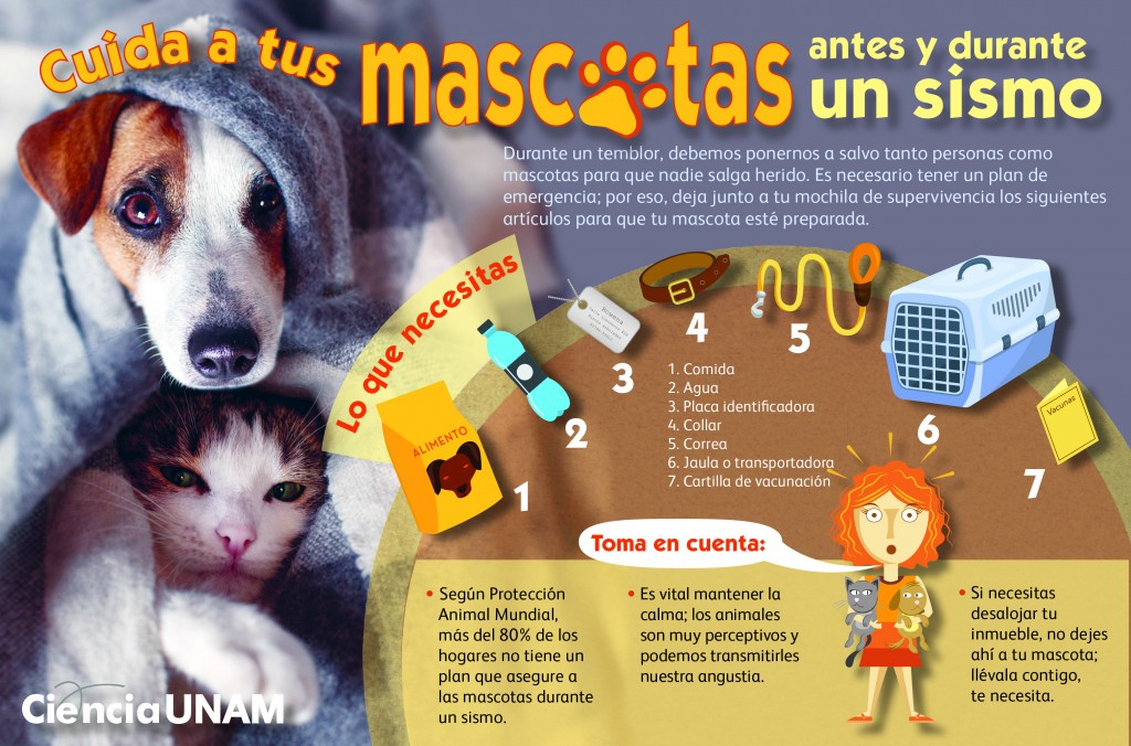 Mascotas-sismos