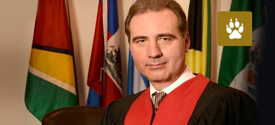 Investigador de la UNAM, nuevo presidente de la CIDH