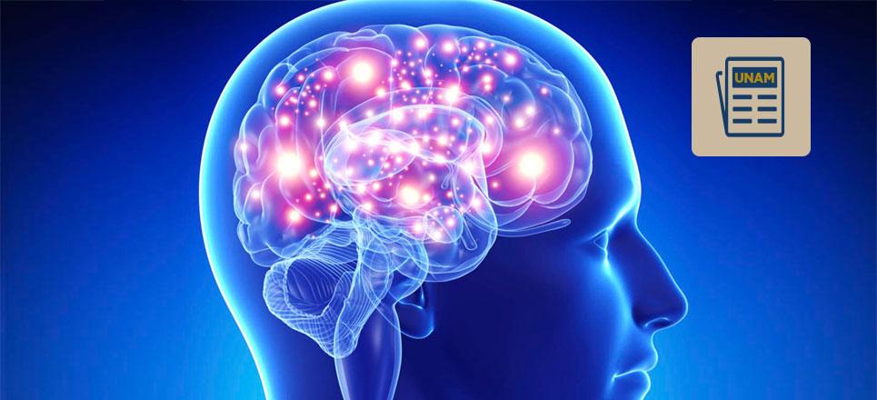 Enfermedad cerebrovascular, incapacitante, pero prevenible: UNAM