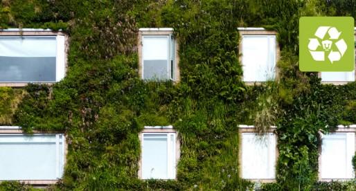 Muros verdes, práctica en aumento