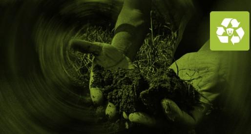 UNAM trabaja en implantes para plantas y así tener una agricultura sustentable