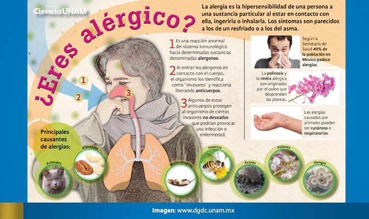 ALERGIAS3