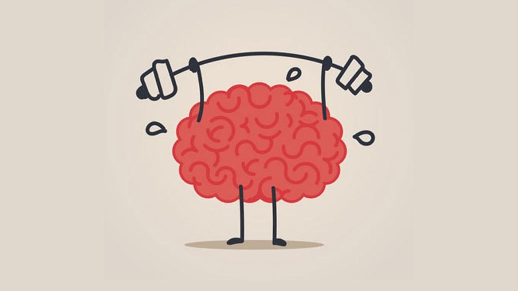 cerebro_contenido2
