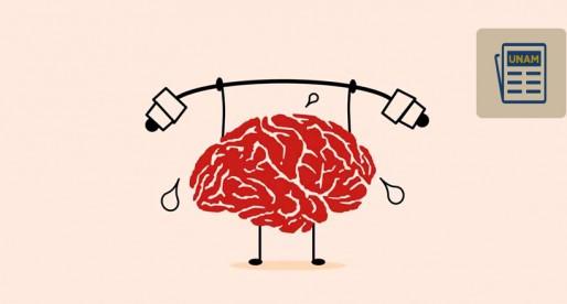 Seguir aprendiendo retrasa enfermedades neurodegenerativas como el Alzheimer