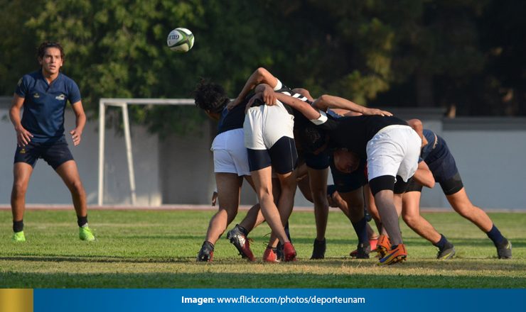 RUGBYPUMAS3