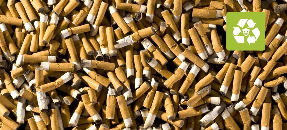 Transforma universitario colillas de cigarro en papel