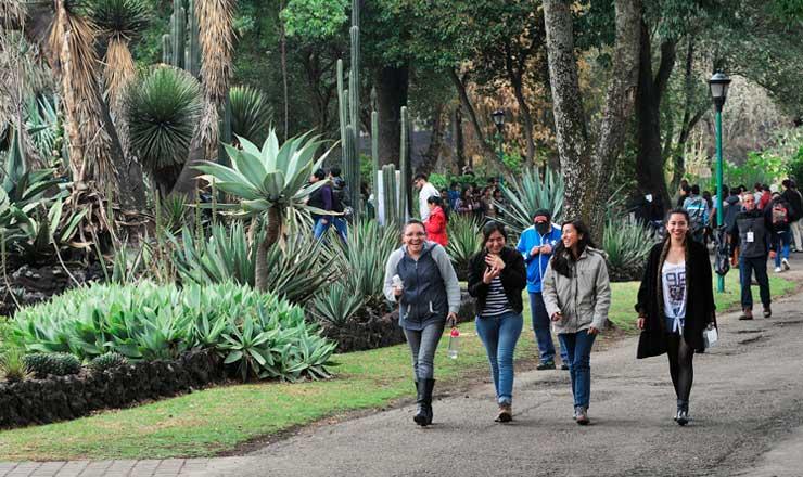 jardinBOTANICO3