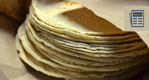Crean tortilla para ayudar a personas con obesidad y desnutrición