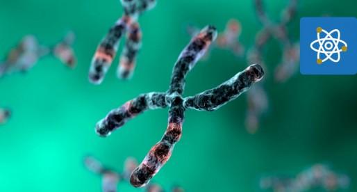 UNAM encabeza investigación sobre proteoma humano