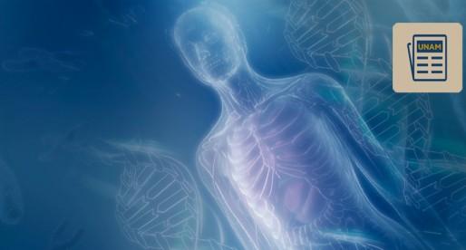 UNAM encabeza equipo para estudiar cromosoma asociado a cáncer y alzhéimer