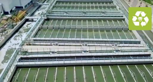 Universitarios crean sistema ecológico de tratamiento de agua