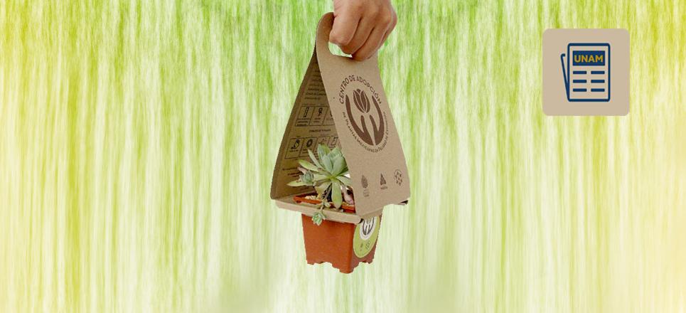 No compres, mejor adopta una planta en la UNAM