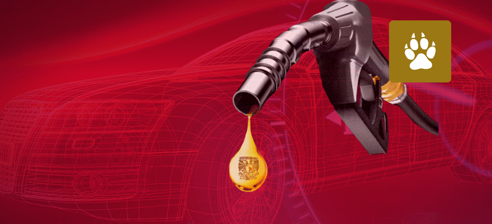 Universitario crea dispositivo para ahorro de gasolina