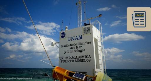 La UNAM y el entendimiento de los arrecifes de coral