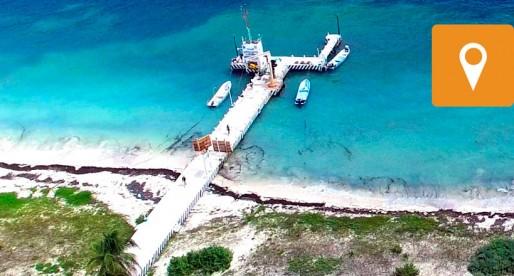 La Unidad de Arrecifes de la UNAM abre sus puertas al público
