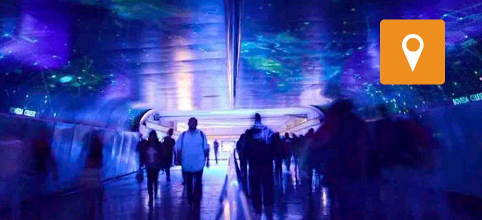 Túnel de la Ciencia, refugio para quienes gustan del Universo y la naturaleza