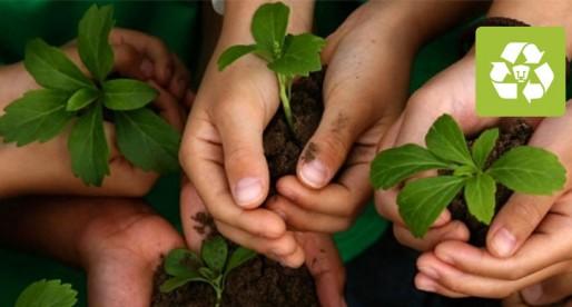 Educación ambiental, la mejor arma contra el deterioro del planeta