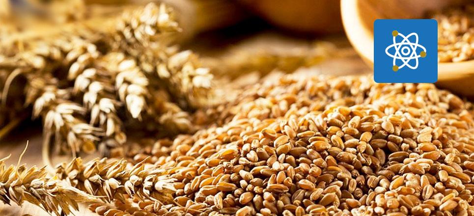 UNAM crea suplementos nutricionales a base de cereales