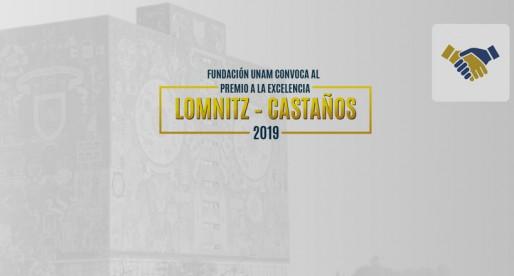Revisa las bases y participa en el Premio a la Excelencia Lomnitz – Castaños 2019.