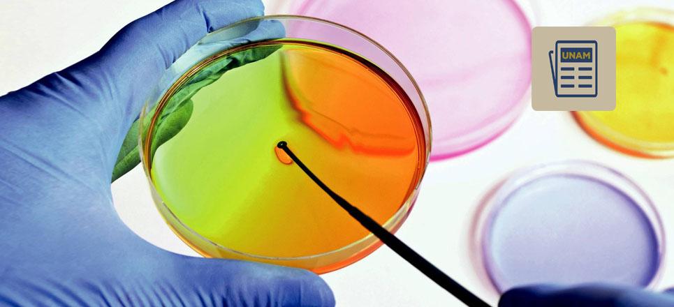 Sabías que los microorganismos se protegen produciendo antibióticos