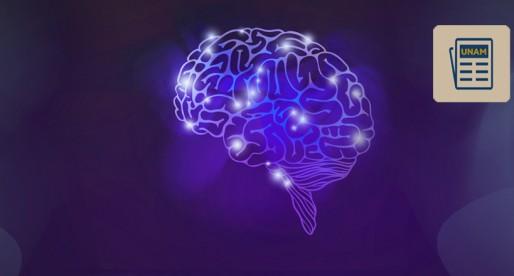 Se calcula que en México hay dos millones de personas con epilepsia