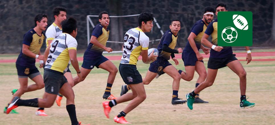 PUMAS, bicampeón de Nacional de Rugby