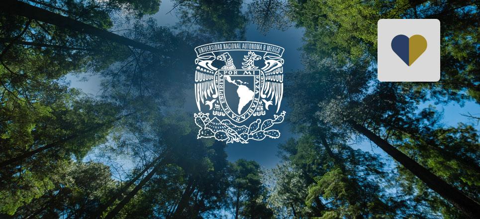 Conoce la nueva licenciatura de la UNAM: Ciencias Agroforestales