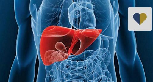 Investigadores obtuvieron una patente para proteger el hígado en pacientes con VIH