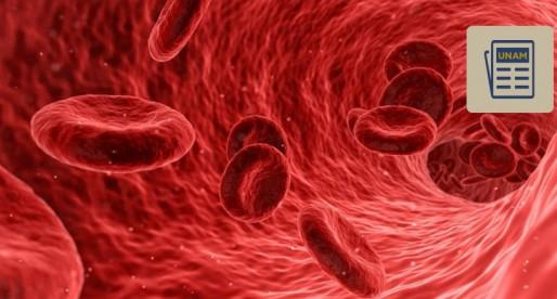 La historia detrás de los grupos sanguíneos