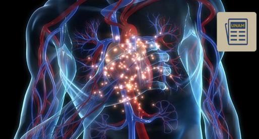 ¿Sabes cómo prevenir un infarto?