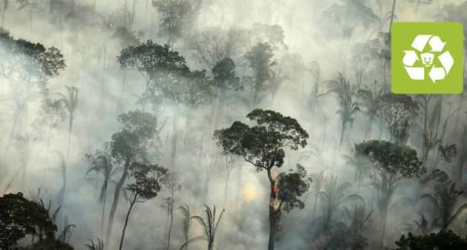 Advierten efectos devastadores por incendios en el Amazonas