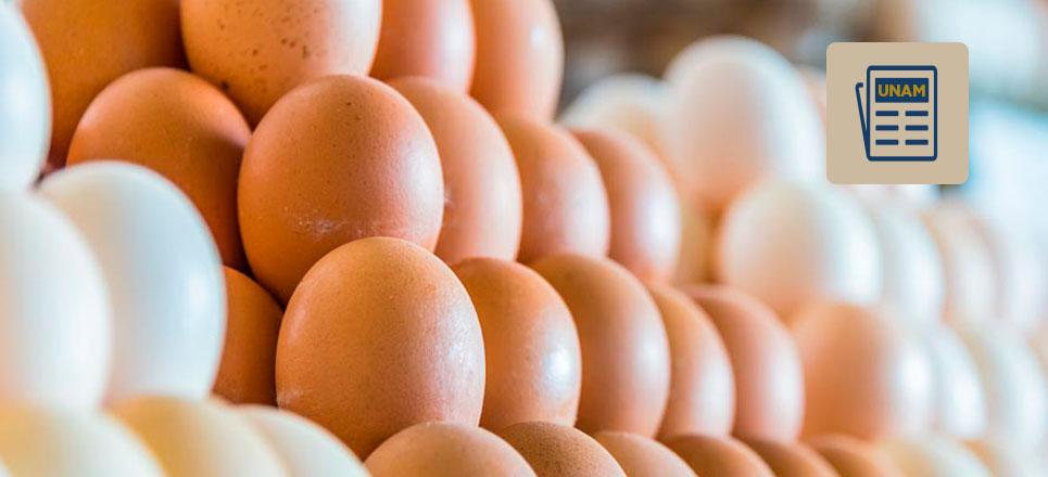 La UNAM y su centro de los huevos de oro