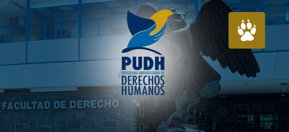 Cumple PUDH UNAM sus primeros ocho años