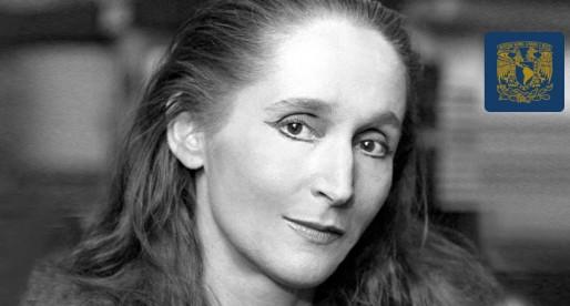 Gloria Contreras, emblema de la danza mundial