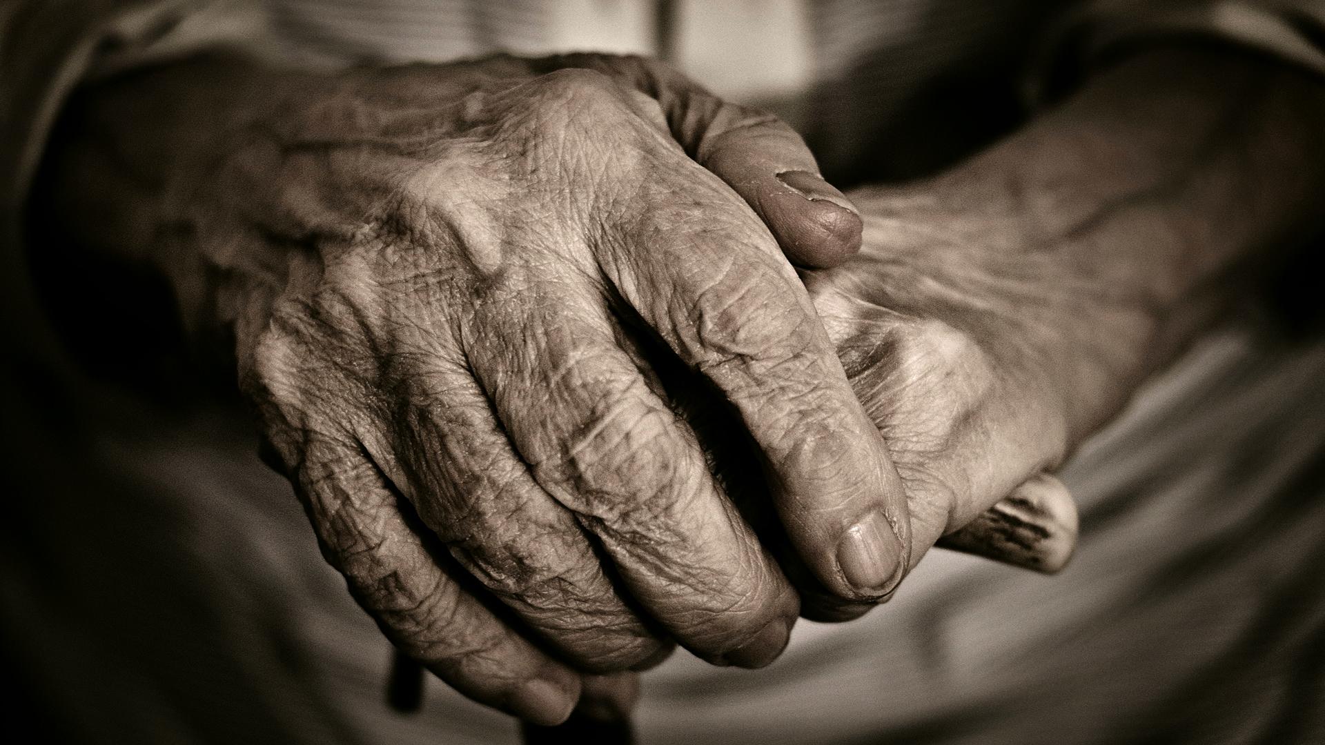 Cultura del Envejecimiento | | Fundación UNAM